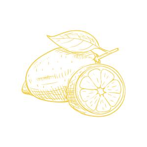 Lemon Zest Diffuser 165ml